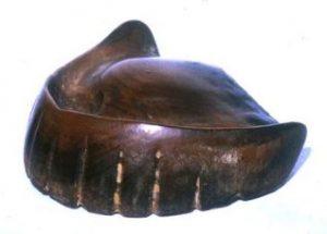 入れ歯の歴史:16世紀の日本で作成された木製の入れ歯