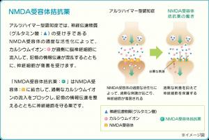 nmda受容体拮抗薬イメージ図