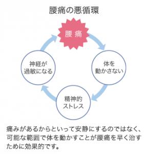 腰痛悪循環